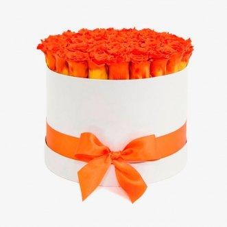 41 оранжевая роза в коробке